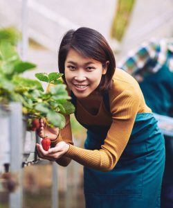 Young asian woman with strawberry plant