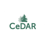 Behavioral Health CeDAR icon