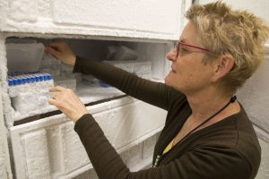 Nancy Madinger, MD, with samples stored at a cool minus-106 degrees.