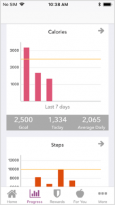Picture shows how activity is tracked on app.