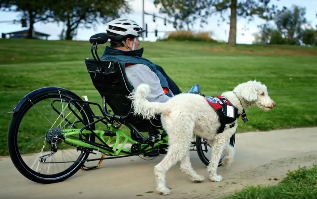 Jim Cohen riding a recumbent tricycle on a bike path with his service dog running alongside him.