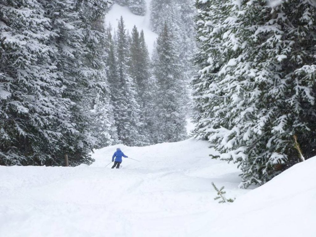A lone skier, Trisha Washburn, skies through a narrow valley with snow-covered pine trees surrounding her. Washburn loves skiing, but lost her confidence after an Alzheimer's diagnosis.