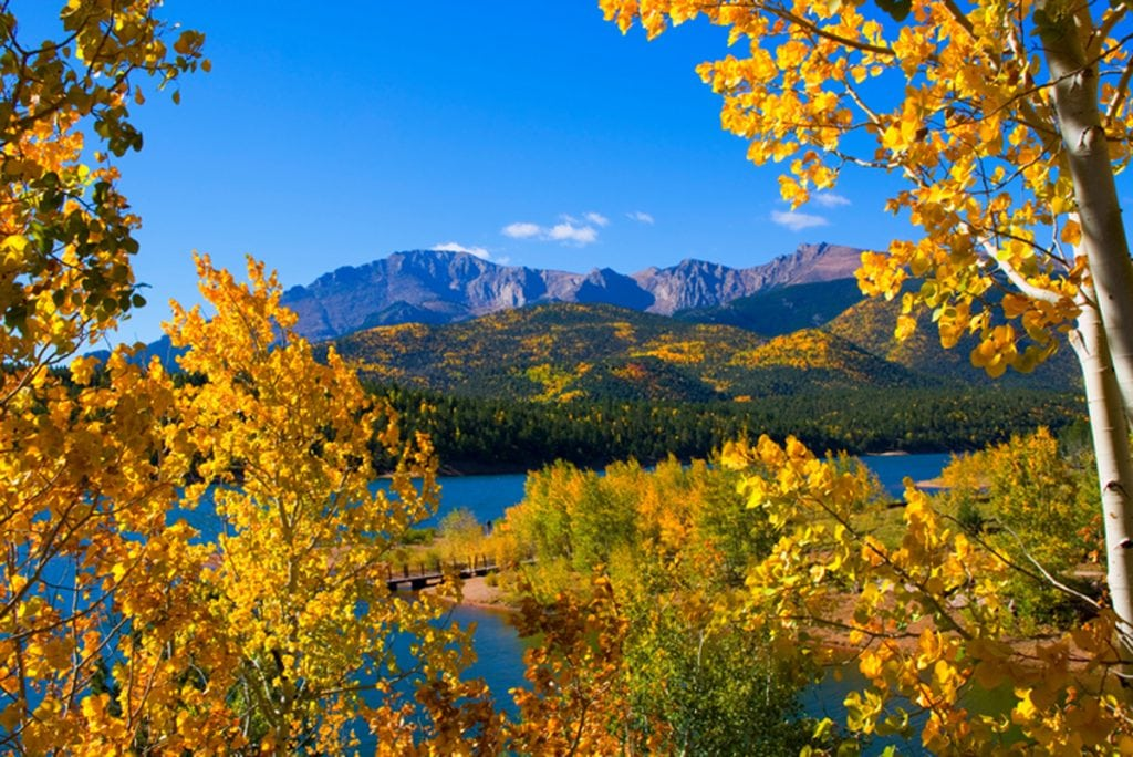 A view of golden aspen trees in the foreground with Crystal Reservoir and Pikes Peak in the background | Best places to see fall colors in Colorado