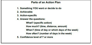 outline of the action planning process