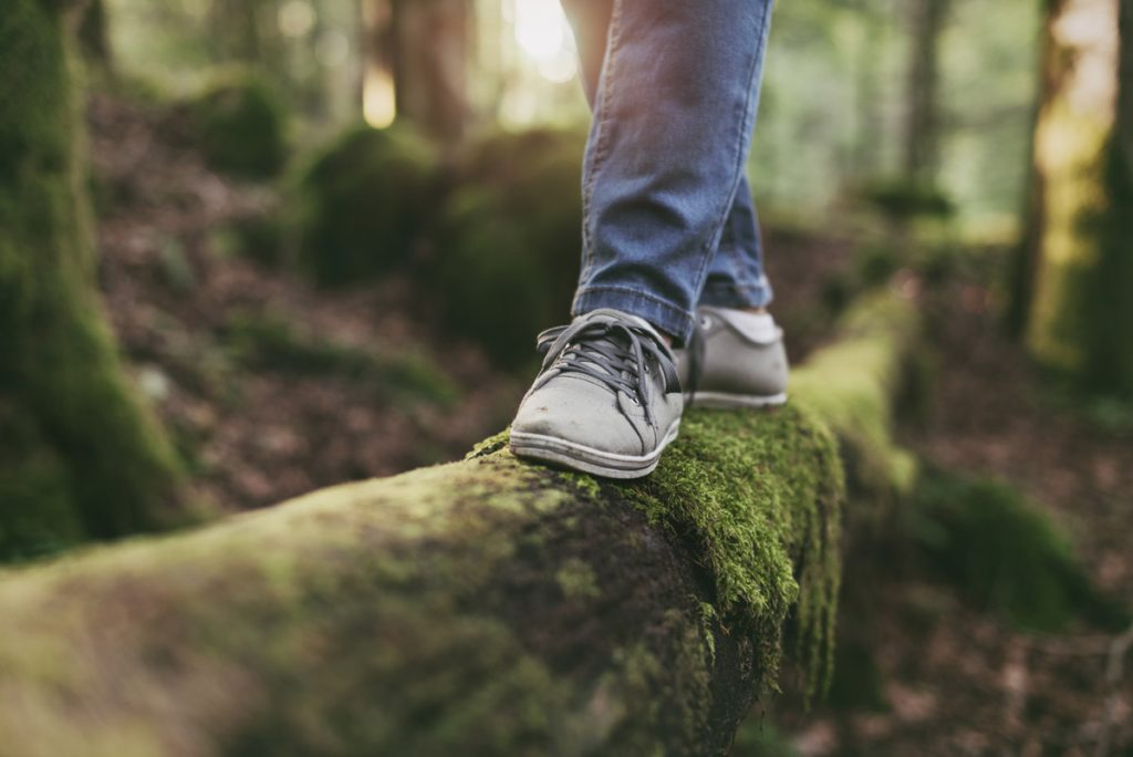 A picture of a person walking, as if on a balance beam, on a mossy tree.
