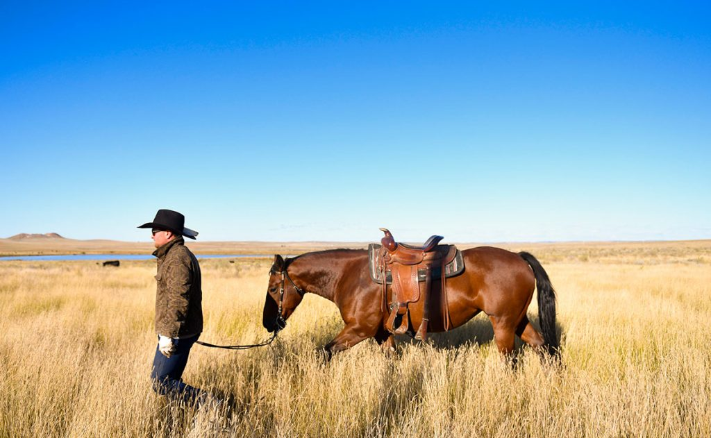 Rancher Nathan Kissack walks his horse, Dixie, on his parents' Wyoming ranch.