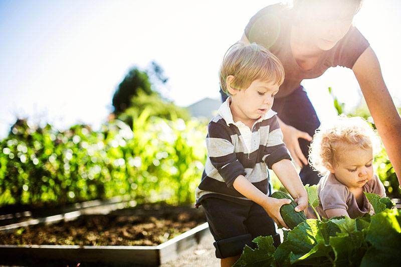 kids gardening with their parent.