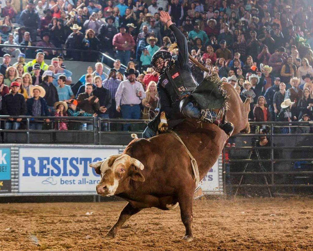 Colten on a bull after limb-restoration surgeries saved his rodeo career.