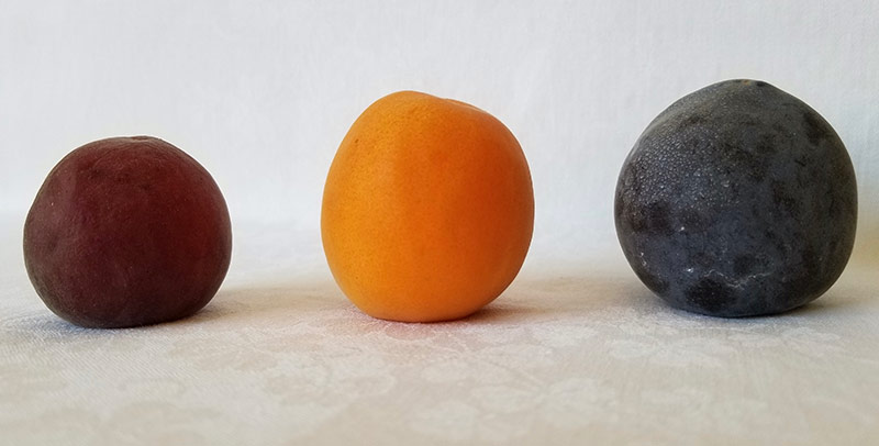 Three different stone fruits