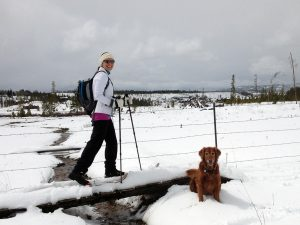 A woman and her dog cross country ski, which is a safe option to ski during COVID-19 because you avoid crowds.