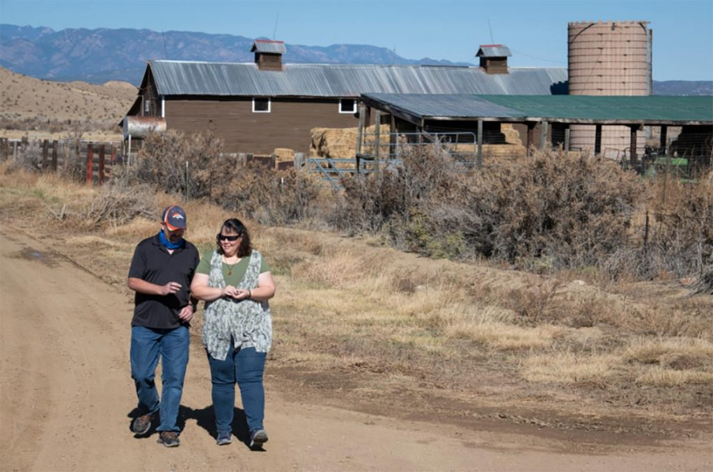 Clay Phillips and his wife, Diana, take a walk on the family ranch after Clay got relief from epileptic seizures..