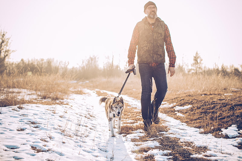 man walking his dog in the winter, getting exercise and sunlight, both help the body deal with COVID-19.