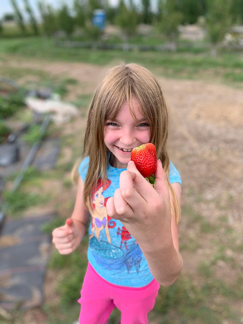 Juno, who is helping others to become a blood donor, holds a strawberry.