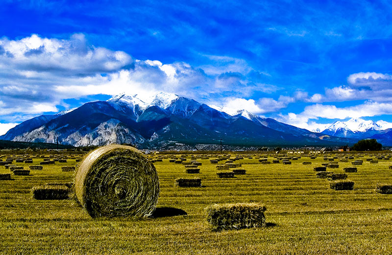 A hay bale with mountains in the background along the Collegiate Peaks Scenic Byway.