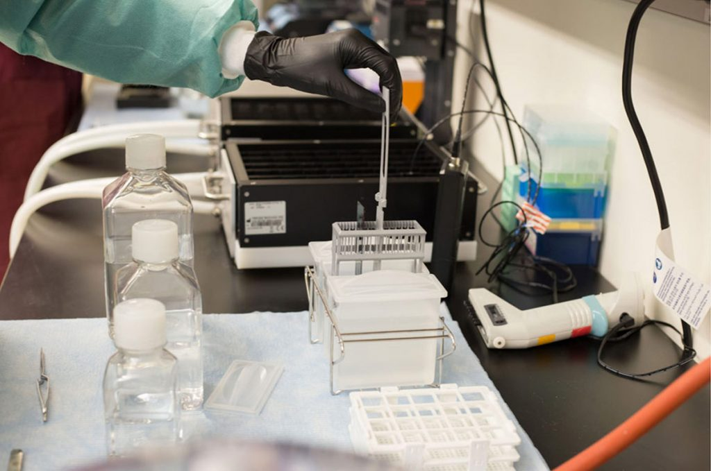 A technician prepares a sample for genetic sequencing at the Colorado Center for Personalized Medicine's Biobank. UCHealth has collected 85,000 biospecimens since the Biobank commenced biospecimen collection in 2016. Photo courtesy of CCPM.