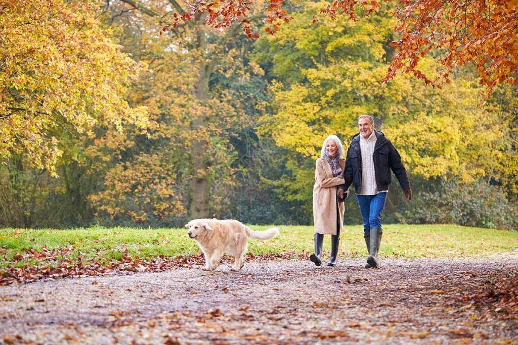 A couple walks in a park